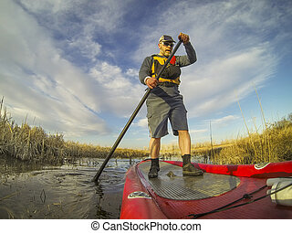 stand up paddling (SUP) in a wetland - mature male paddler...