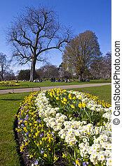 Hyde Park in London