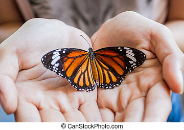 Woman hand holding a beautiful butterfly.