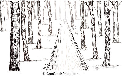 forest hand drawing - forest sketch hand drawing in vector