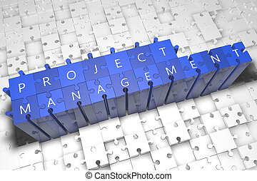 Project Management - puzzle 3d render illustration with text...