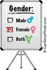 whiteboard gender - detailed illustration of a whiteboard...