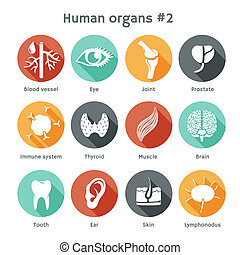 Vector set of flat icons with human orangs - Vector round...