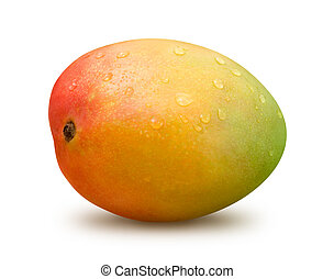Mango with Water Drops