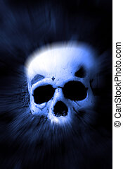 Human Skull Zoomed - Human skull lying on top of dirt Zoomed