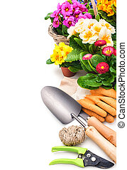 Gardening tools and flowers isolated on white with copy...