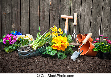 Gardening - Planting flowers in pot with dirt or soil at...