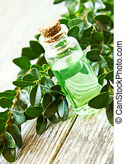 Herbal Essential Oil Bottle for Aromatherapy.Green Essence