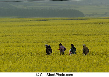 Going Back Home - A group of worker on the way to their home...