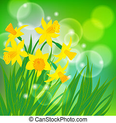 Vector card with daffodils on light green bokeh background....
