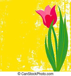 Vector card with red tulip on textured background. Template...