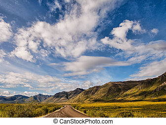 Follow Your Bliss - Dirt road in Yukon Territory in summer...