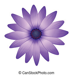 A fresh purple flower - Illustration of a fresh purple...