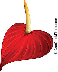 A red flower - Illustration of a red flower on a white...