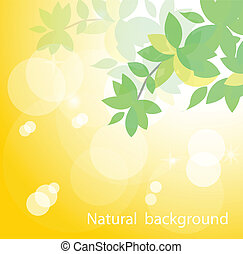 natural background - Fresh green leaves on natural...