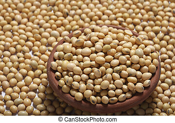 Soyabean a legume often used vegetable - Soyabean - The...