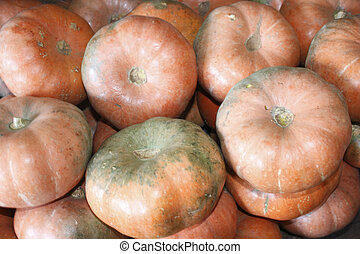 Pumpkin - It is a common name of or can refer to cultivars...