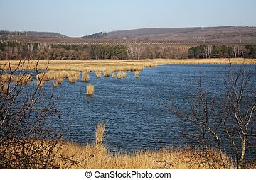 Rushy lake by early spring - A photo of Rushy lake by early...