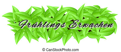 """Banner made of leaves isolated on a white background with inscription """"spring season"""""""