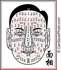 Physiognomy-facial reading - It refers to relatively...