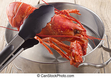 lobster is taken from a pot - cooked lobster is taken from a...