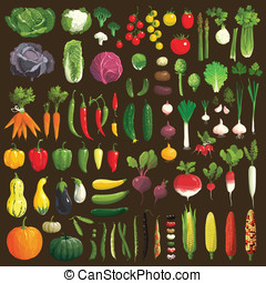 Vegetables - Great collection of the clip art vegetables