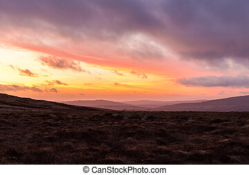Heathlands at dusk in Wicklow Mountains