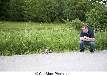 Man Approaches Turtle on Roadway