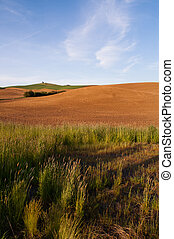Farm Industry Plowed Field Spring Planting Palouse Country Ranch