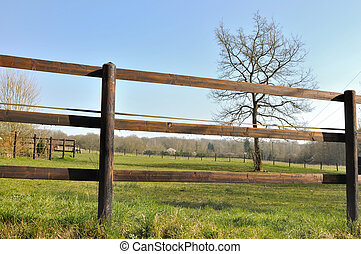 fence electrified - wooden fence electrified an equestrian...
