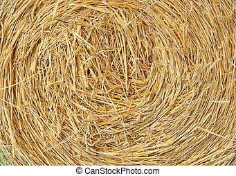 straw bale - a big round bale of  straw for stock feed