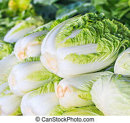 Green cabbage and lettuce
