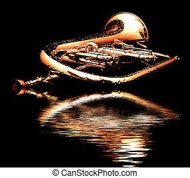 silver fluegelhorn in night