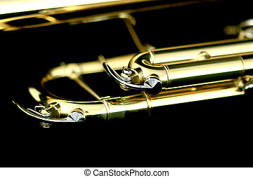 trumpet details in night - gold lacquer trumpet details on...
