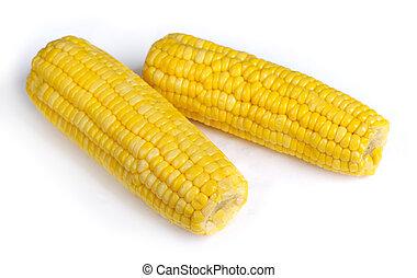 Ear of corn isolated on white background