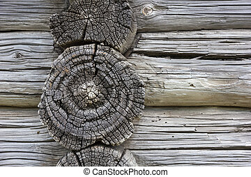 Wood texture. Fragment of old log house. Natural textured...