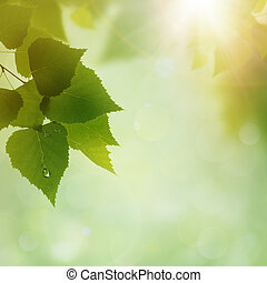 Green Nature, abstract environmental backgrounds for your...