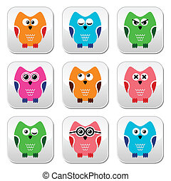 Owl cartoon vector icons set - Decorative colorful owl icons...