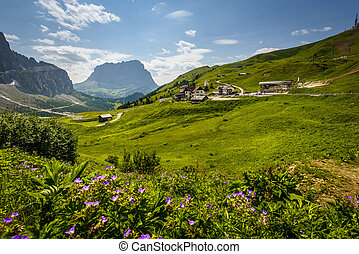 Dolomites - Italy Dolomites moutnain at summer - Passo...