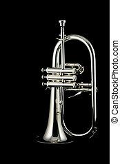 silver fluegelhorn in night - silver fluegelhorn with...