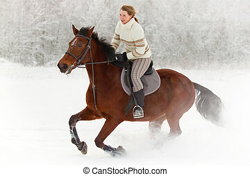 Horse riding in winter - Young woman rides on horseback in...