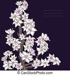 Branch of hand drawn cherry blossom on the dark background