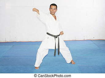 Man training karate in the gym
