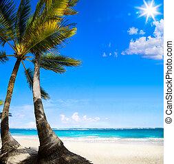 心を動かされない, 浜, 芸術, カリブ海, トロピカル