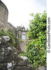 castle door between plants