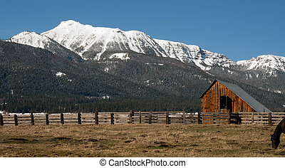 Old Horse Barn Endures Mountain Winter Wallowa Whitman...