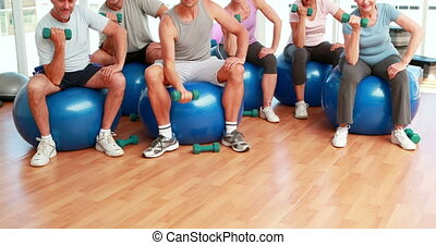 Fitness group sitting on exercise balls lifting hand weights...