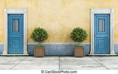 Vintage facade with two blue doors and plants in a wooden...