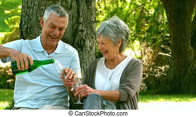 Retired couple drinking champagne in the park in slow motion