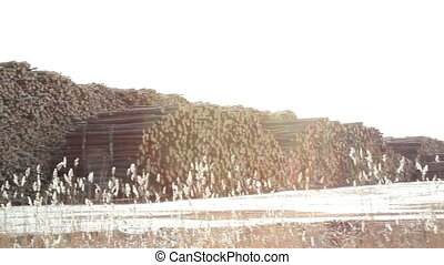 Tall stacks of piled